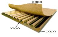 Caracterização do material