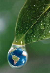 Pesquisa mostra que brasileiro se preocupa mais com meio ambiente, com reciclagem e com produtos sustentáveis