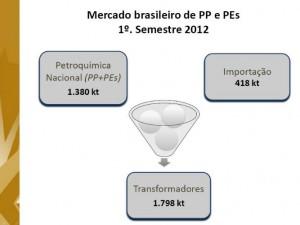 Mercado brasileiro de PP e PEs