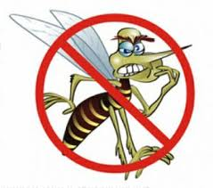 Repelentes de insetos passam a ter novas normas