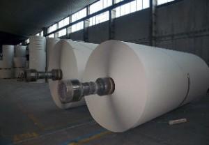 Cresce produção de celulose e papel