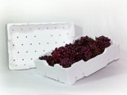 Termotécnica apresenta linha de embalagens de EPS para frutas