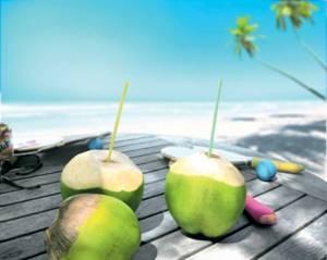 Água de coco se torna tendência em embalagem cartonada