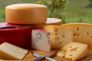 Uma fatia especial do mercado de queijos