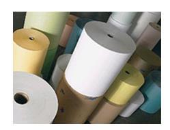 Produção de celulose e papel cresce no primeiro semestre