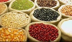 Safra de grãos deve crescer 12,6% e chegar a 187 milhões de toneladas