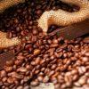 Produção de café deste ano é a maior da história brasileira