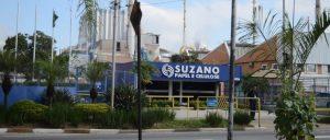Suzano anuncia planos de investir R$ 6,4 bilhões em 2019
