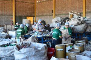 Programa de reciclagem da Danone aumenta renda de catadores de MG e SP em 73,9%